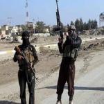 IŞİD 'cihad'ı nasıl çarpıtıyor?