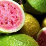 Saç dökülmesinden koruyan guava meyvesinin faydaları