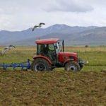 Tarım ÜFE ağustosta azaldı