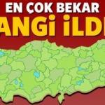 Türkiye'de en fazla bekar hangi ilde?