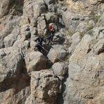 Kayalıkta mahsur kalan 2 keçiyi, AFAD ekibi kurtardı