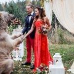 Bu düğün sosyal medyada paylaşım rekorları kırdı!
