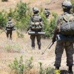 Siirt kırsalında terör örgütü PKK'ya ağır darbe