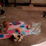Köpeğin oyunu, bebeği kahkahaya boğdu