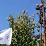 AK Partili vekil direğe tırmandı!