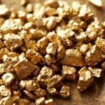 Altın ithalatı mayısta patladı