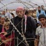 Muhacire ensar mülteciye kardeş olmak