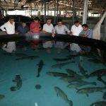 Milletvekili Uslu, Akdeniz Su Ürünleri Araştırma Enstitüsünü ziyaret etti