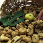 Aydın'da sezonun ilk kuru inciri 70 liradan satıldı