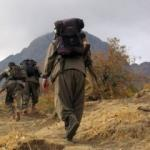 İş adamının PKK'ya para aktardığı iddiası