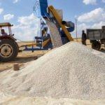 10 bin ton hasat bekleniyor
