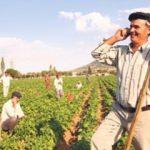 Çiftçiye telefonla canlı destek verecekler