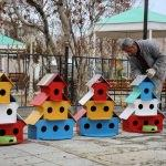 Kuşlar için ilçeyi yuvalarla donattılar