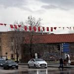 """""""Zeytin Dalı Harekatı""""na Türk bayraklı destek"""
