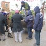 Daha yeşil Viranşehir için belediye fidan dağıttı