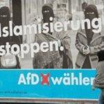 Almanya'da AfD korkusu!