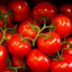 Rusya 120 tondan fazla meyve ve sebzeye el koydu