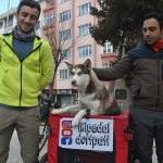 """Hayvan hakları için """"İki pedal dört pati"""" yola çıktılar"""