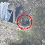 ÖSO görüntüledi! İşte kritik dağdaki teröristler