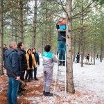 Kütahya'da ağaçlara kuşlar için yuva asıldı