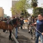 Şanlıurfa'da at arabacıların eylemi