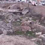 Özel Harekat Polisleri'nin Irak'taki zorlu görevi