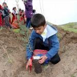 Öğrenciler Afrin şehitleri için fidan dikti