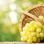 Yeşil üzümün faydaları nelerdir? Hangi hastalıklara iyi gelir?