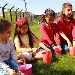 """Siirt'te """"Önce Kalemimiz Sonra Dünyamız Çiçek Açsın"""" projesi"""
