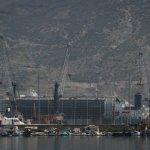 İthal edilen 20 bin Angus İskenderun Limanı'na ulaştı