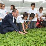 Başkan Duruay, sebze fidesi dağıttı