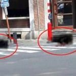 Belçika'da silahlı saldırı! Ölü sayısı arttı