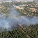 İzmir menderes'te orman yangını çıktı