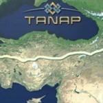 Türkiye'ye ilk sevkiyat başladı
