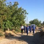 Kaybolan zihinsel engelli kadın zeytinlik alanda bulundu