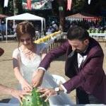 17. Bafra Kavun ve Karpuz Festivali