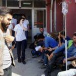 İzmir'de büyük panik! Sayı 700'e ulaştı