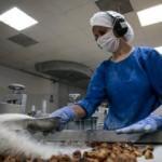 """""""Mutlu Köy""""le gelen ihracat başarısı"""