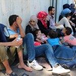 Hatay'da 24 düzensiz göçmen yakalandı