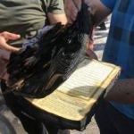 Her şeyin yandığı markette Kuran-ı Kerim mucizesi