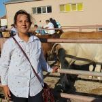Malkara'da genç çiftçilere düve desteği