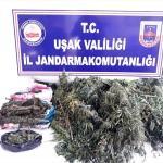 Uşak'ta 6,4 kilogram esrar ele geçirildi