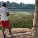 Adana'da nehre giren genç kaybolması