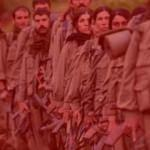 PKK'lı teröristten Amanos itirafı!