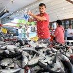 Karadeniz'de balık bolluğu