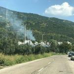 Erdek'te zeytinlik yangını