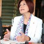CHP Parti Meclisi Üyesi Emecan: