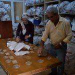 Geliştirilen tohumlar Türk tarımına güç katıyor