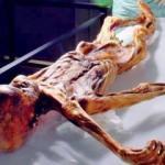 Meğer 'Ötzi'de bakın ne varmış!
