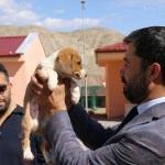 AK Parti'den sokak hayvanları yaşam rehabilite merkezine ziyaret